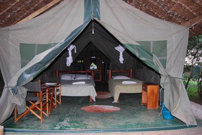Image result for camping safari masai mara